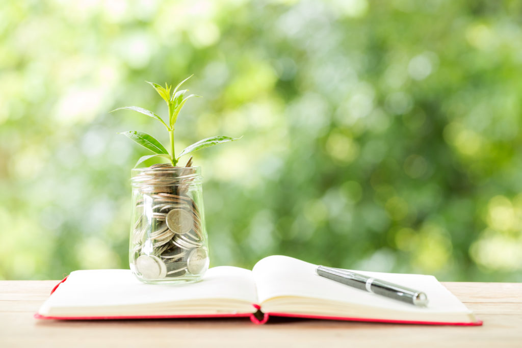 Photographie d'une plante grandissant dans de l'argent avec un livre des comptes pour le tarif freelance /  freelance rate